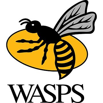 Wasps by bendorse