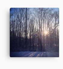 Early winter morning Metal Print