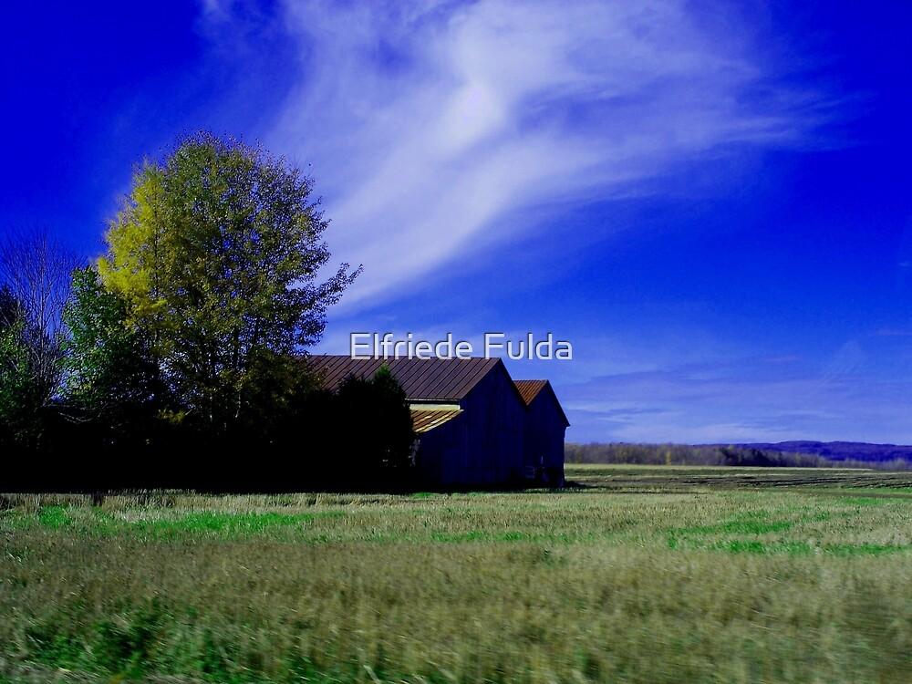 A Farm ! by Elfriede Fulda