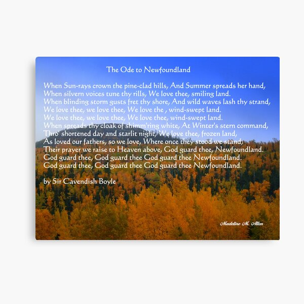 The Ode To Newfoundland Canvas Print