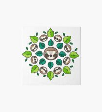 Mandala Sloth Art Board