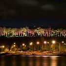 Kings Park at Night, Perth, Western Australia by palmerphoto