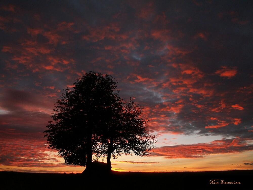 Sunrise by TrueBavarian