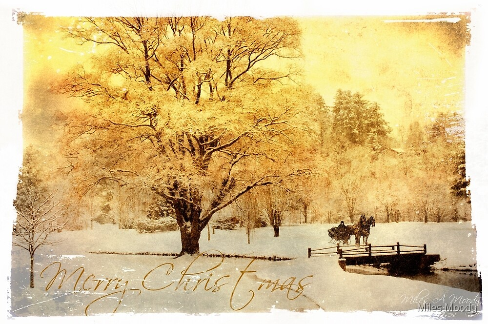 Two Horse Vintage Photo Christmas Card  by Miles Moody