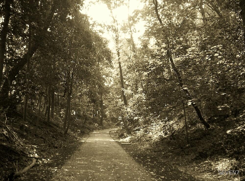 A long walk by SEVEN7