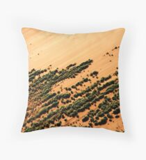 Sossusvlei Throw Pillow