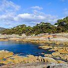 Beautiful Bicheno, Tasmania by Pauline Tims