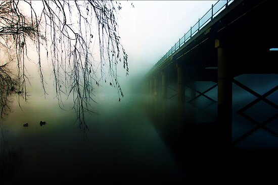 Ducks In The Mist by Paul Evans