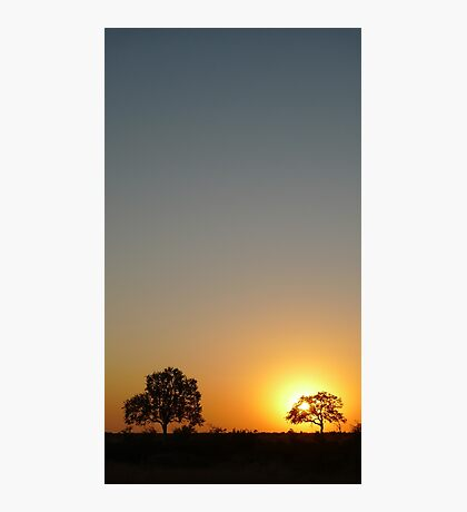 A Kruger Sunrise Photographic Print
