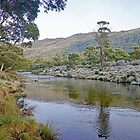 Dawn on the Thredbo River by Harry Oldmeadow