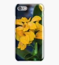 Orchid Vanda Yellow iPhone Case/Skin