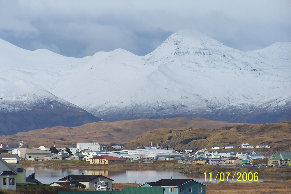 The UnAlaska Side of the Island by Kevin  Warrick