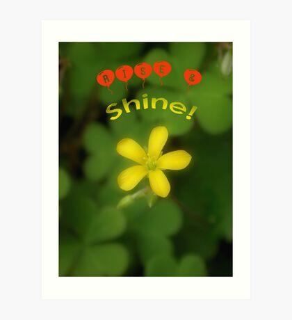 Rise & Shine! Art Print