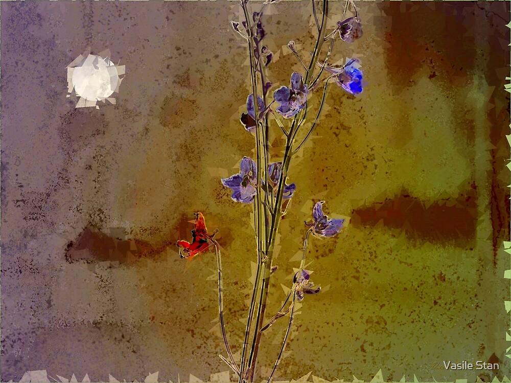 Shattered dream by Vasile Stan