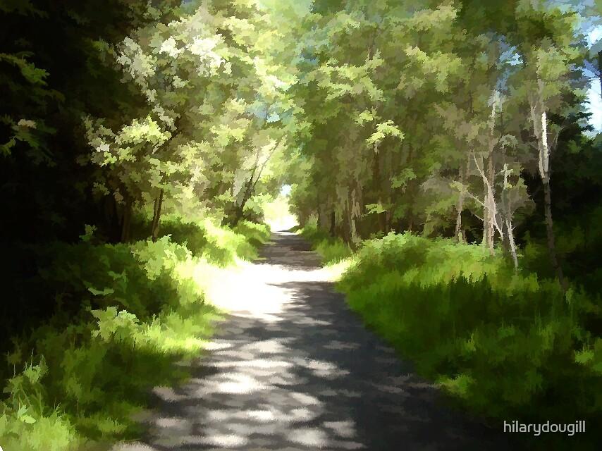 Dappled Path by hilarydougill