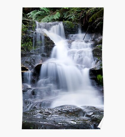 Leura Cascades - Blue Mountains, NSW, Australia Poster