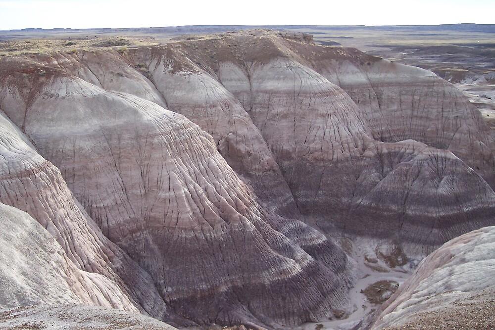 Painted Desert Arizona by derekmccrea
