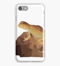 Cryptic dragon iPhone Case/Skin