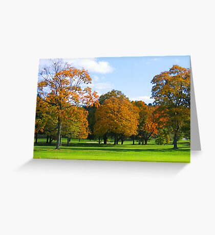 Fall in New York photography Greeting Card