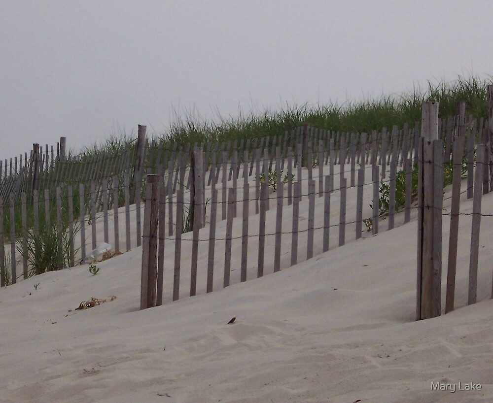 The Dune Fence by Mary Lake