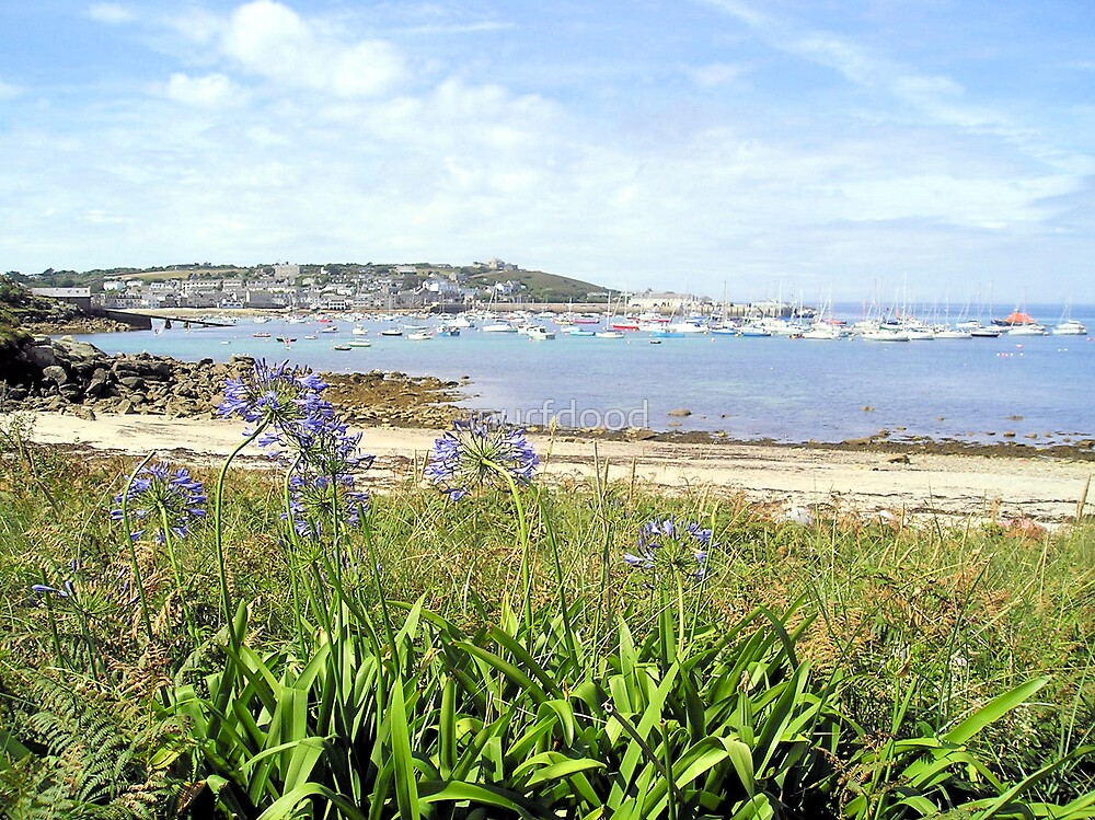 Towards Hugh Town, Scilly by snurfdood