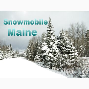 Snowmobile Maine by nmpics