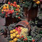 USA. Pennsylvania. Philadelphia Flower Show 2017. Barrels. by vadim19
