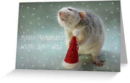 Merry Christmas and Happy new year! by Ellen van Deelen