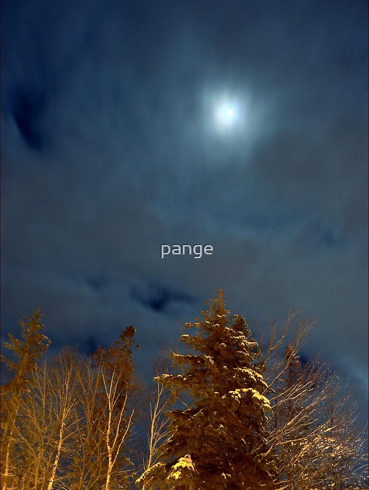 Air Versus Earth by pange