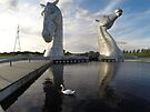 The Kelpies sculptures at the Helix Park in Falkirk  by David Rankin