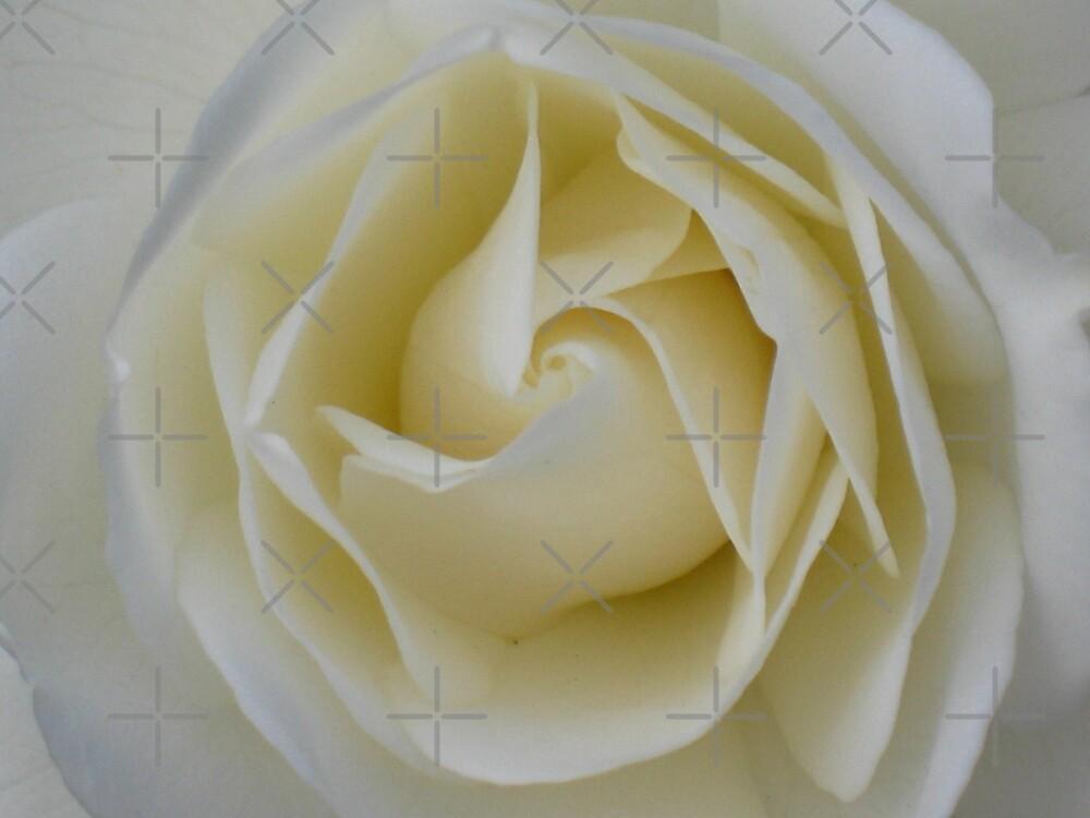 Cream Swirl - JUSTART © by JUSTART