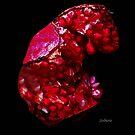 Pomegranate Jewel by Rosemary Sobiera