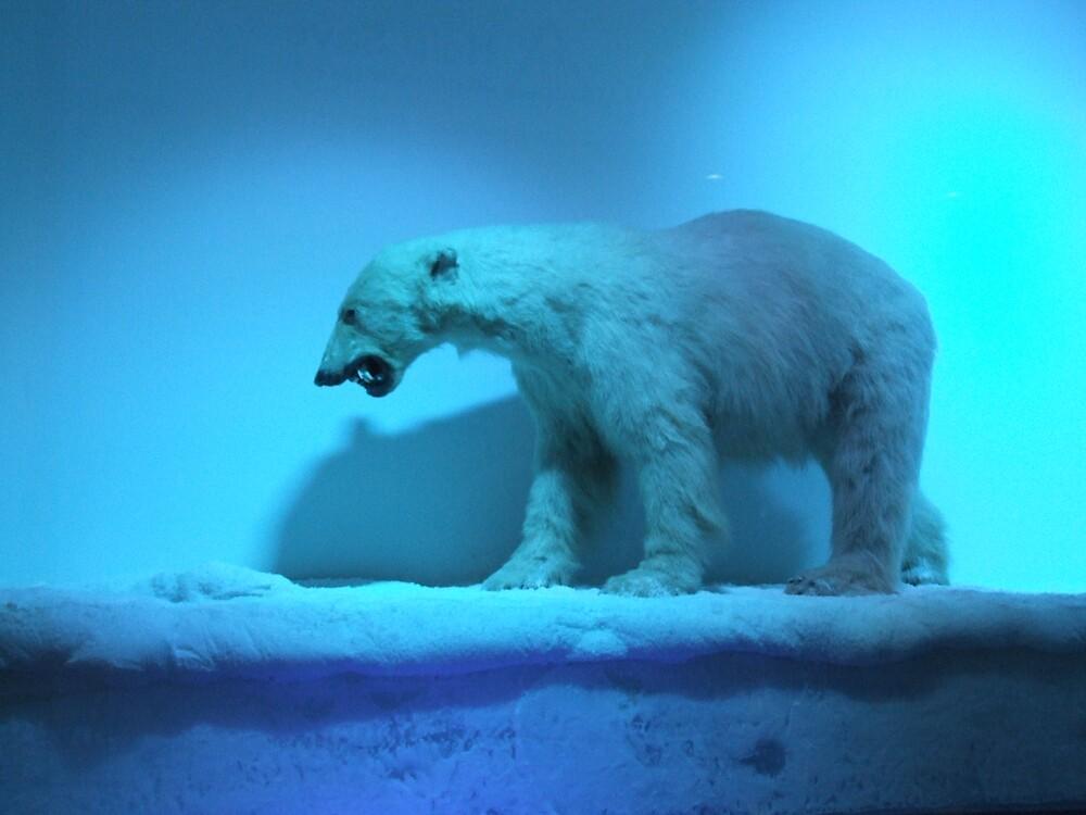ice by Nisha