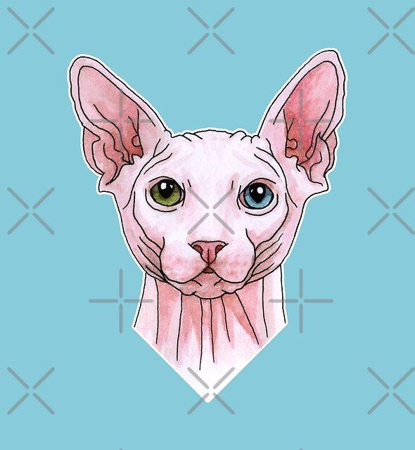 Sphynx cat portrait by savousepate
