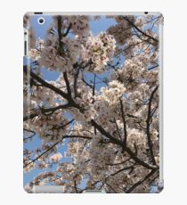 spring cherry blossoms, pink flowers. Japan. iPad Case/Skin