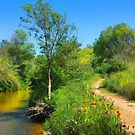 The River Trail by jean-louis bouzou