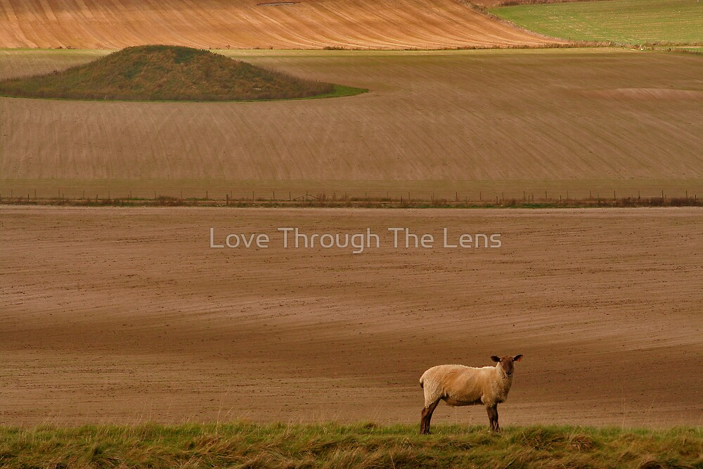 Poundbury, Dorset by Love Through The Lens