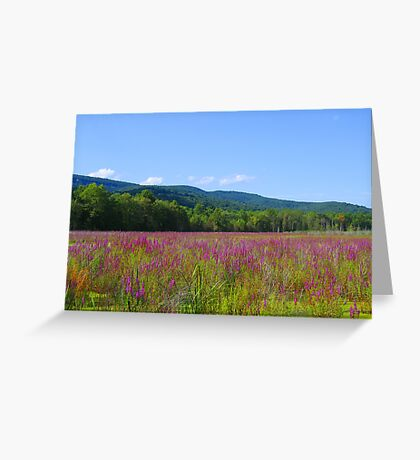 Beauty of New York photography Greeting Card