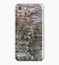 Birch tree bark close-up texture photo iPhone Case/Skin
