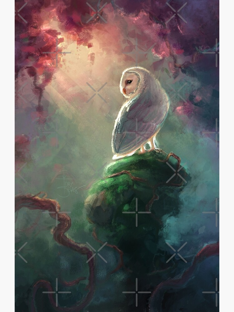 Barn Owl by torysevas