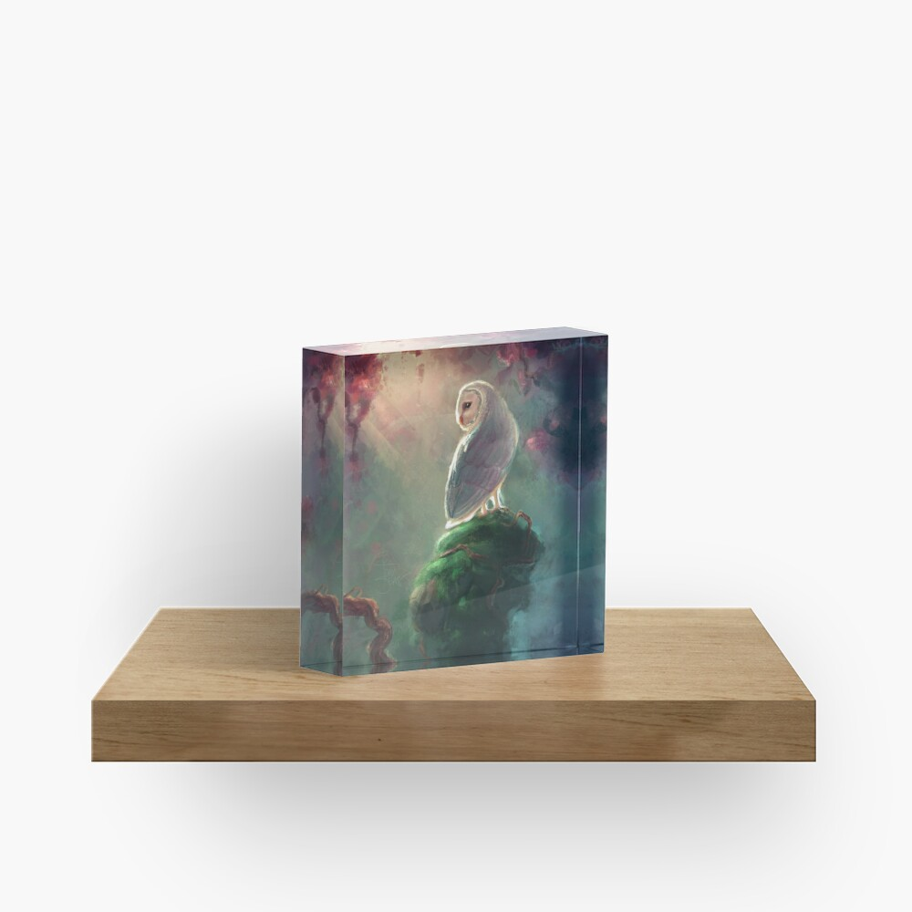 Barn Owl Acrylic Block