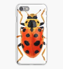 Orange Beetle iPhone Case/Skin