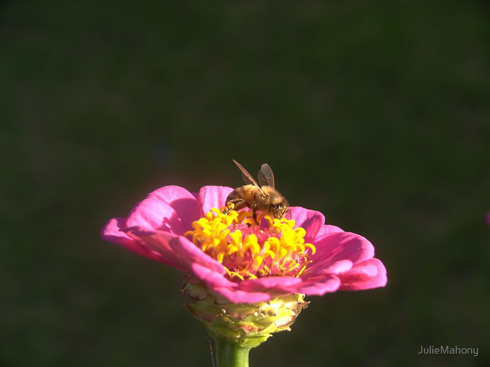 Busy As A Bee by JulieMahony