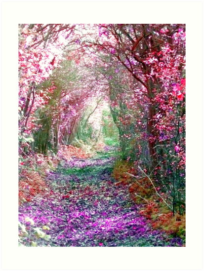 Secret Garden by Vicki Spindler (VHS Photography)