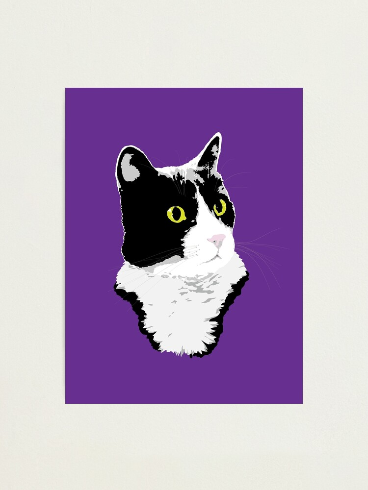 Alternate view of Regal Tuxedo Kitty Photographic Print