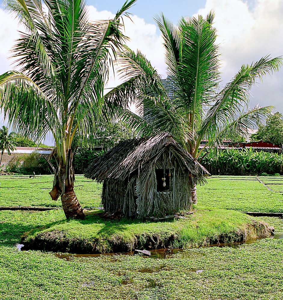 little grass shack.... by kevin smith  skystudiohawaii