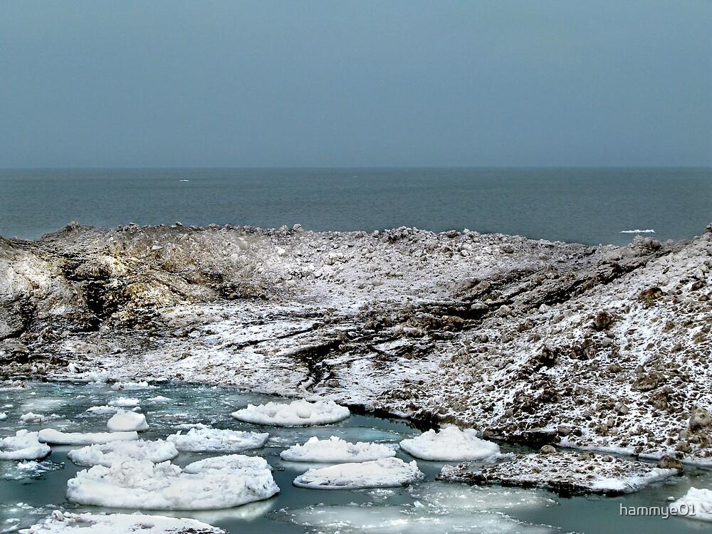 Ice Floats II by hammye01