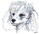 Portrait of a Poodle (for my mom), watercolor by Kendra Shedenhelm