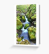 Moine Creek Greeting Card