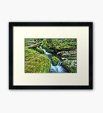 Moine Creek 2 Framed Print